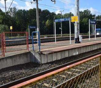Ułatwienia dla podróżnych na stacjach od Zbąszynka do Słubic