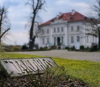 Pałac, konie i natura – oderwij się od rzeczywistości w niedalekiej odległości od Wrocławia