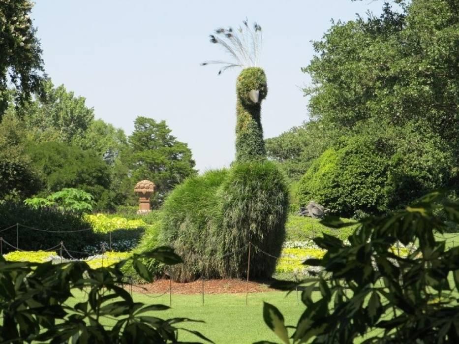 Ozdoby ogrodowe mogą być tworzone z roślin