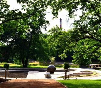 Quiz. Co wiesz o parkach we Włocławku. Lubimy do nich chodzić, ale co o nich wiemy?