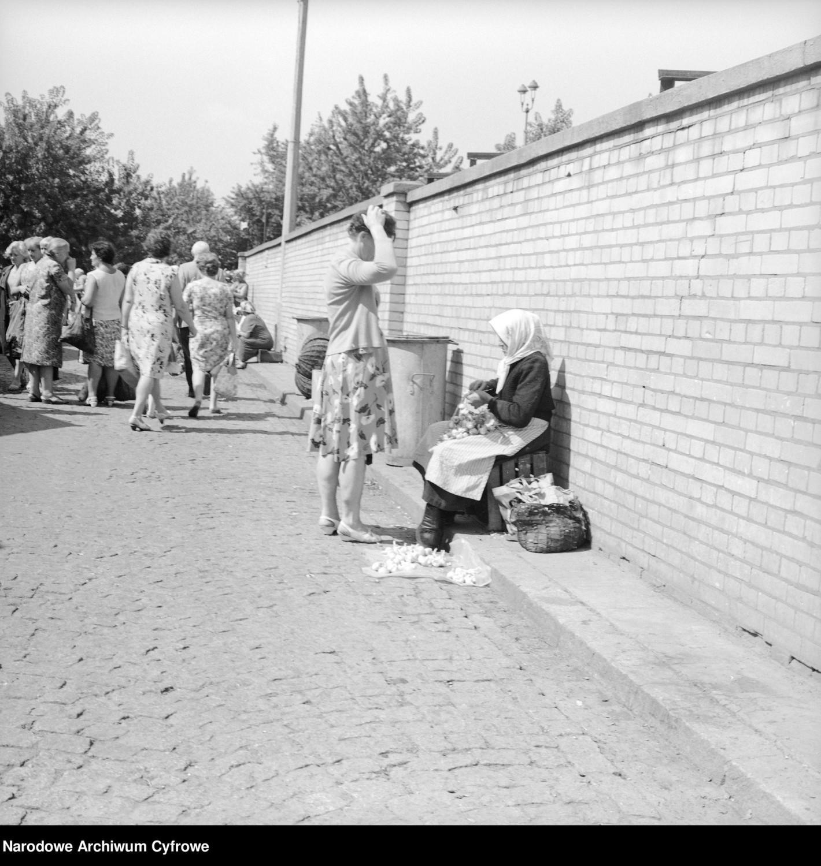 Staruszka handlująca czosnkiemWidok na bazar