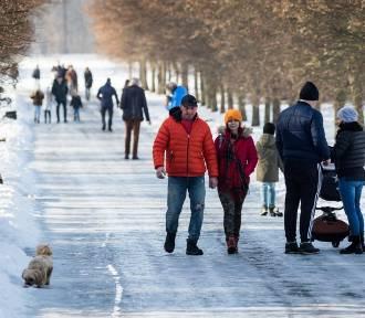 Jaka będzie zima 2021/2022? Tak prognozuje IMGW