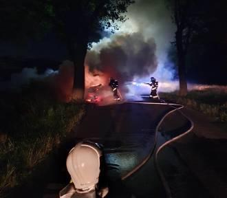 Zieleń: bus uderzył w drzewo i stanął w płomieniach