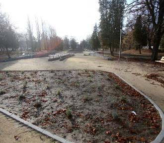 Przebudowa parku dobiega końca. Wiewiórki przetrwały