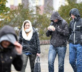 W Łodzi spadł pierwszy śnieg