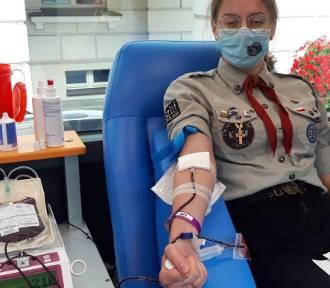 Harcerze w Kaliszu zaprosili do oddawania krwi. Oto efekty. ZDJECIA