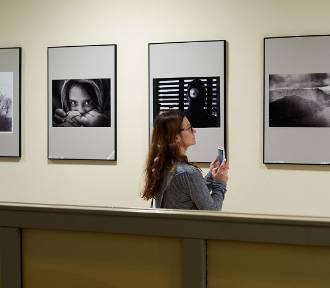 Wernisaż wystawy dorocznej Lubelskiego Towarzystwa Fotograficznego [ZDJĘCIA]