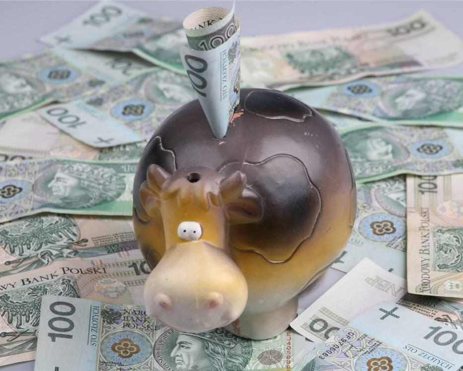 Średnie wynagrodzenie w sektorze przedsiębiorstw w Kujawsko-Pomorskiem w całym 2016 roku wyniosło 3 583,99 zł