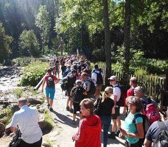 Podsumowanie TOPR: rekordowe lato w Tatrach, tak dużo pracy nie było od lat!