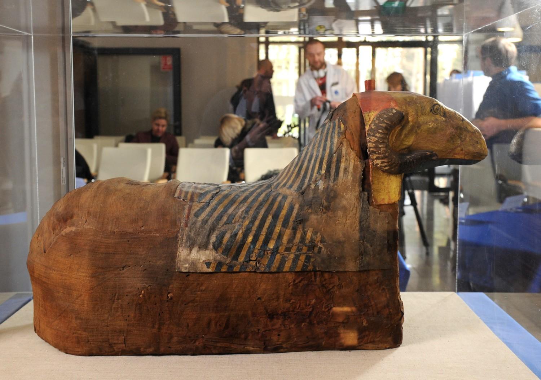 Warsaw Mummy Project. Pod Warszawą badają egipskie mumie z Muzeum Narodowego [ZDJĘCIA]