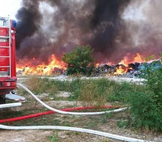 Ogromny pożar na Dolnym Śląsku. Płonęły nielegalne śmieci z Niemiec i Wlk. Brytanii