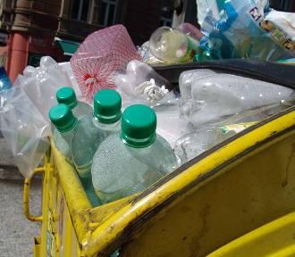 Co się dzieje z butelkami PET po recyklingu?