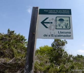 Baleary. Wyspa Espalmador - Park Narodowy Ses Salines (część 2)