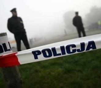Zwłoki policjantki ze Swarzędza i jej synka odnalezione w lesie