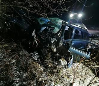 Samochód uderzył w drzewo pod Chełmnem. Nie żyje kierowca