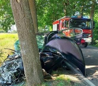 Kolizja koło Pobłocia. Auto uderzyło w drzewo [ZDJĘCIA]