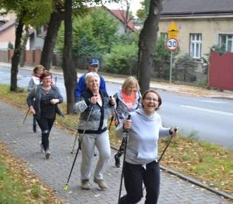 W Jaworznie znowu wyruszą w drogę z kijkami. Przed nami rajdy Nordic Walking