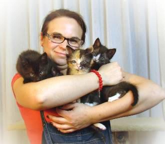 Czym jest dom tymczasowy dla kotów? Opowiada Ewa Głogowska z Żor, która pomaga od czterech lat [ZDJĘCIA]