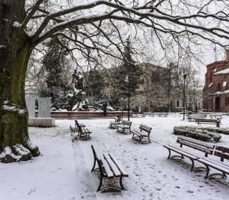 Pogoda w Bydgoszczy. W czwartek temperatura na minusie, może padać też śnieg [prognoza 3 stycznia]