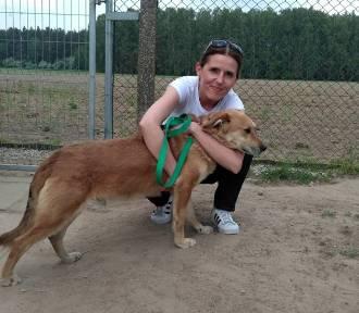 Złotowskie schronisko dla psów ma pomocników na spacerach [ZDJĘCIA]