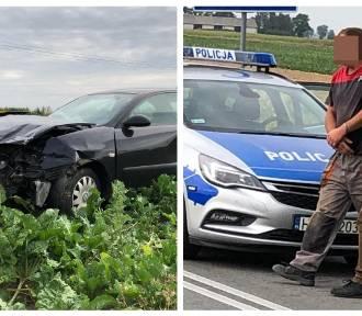 Wypadek na drodze Włocławek - Radziejów. Pijany kierowca uciekł i ukrył się w kukurydzy [zdjęcia]