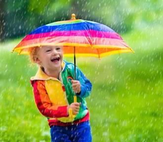 Jaka pogoda w Poznaniu i Wielkopolsce na początku lipca?