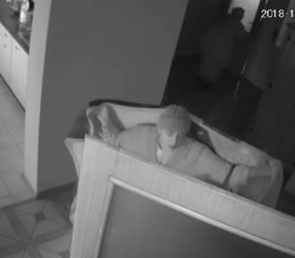 Policja w Kaliszu szuka złodziejek, które okradły starszą osobę. Zobaczcie wideo