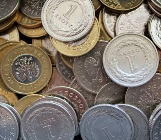 Wzrost płacy minimalnej w 2019 roku. Zarobimy więcej