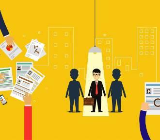 Zobacz, po czym rozpoznać solidnego pracodawcę. Trendy w HR