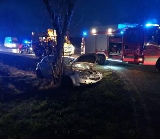 Wypadek w Szadkowicach. Pod auta wyskoczył jeleń [zdjęcia]