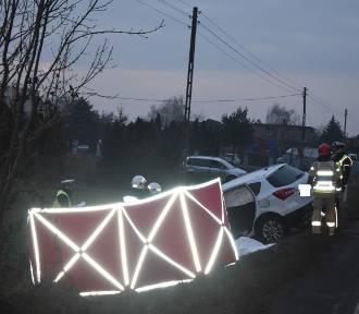 Śmiertelny wypadek w Piekarzewie na drodze krajowej nr 12. ZDJĘCIA