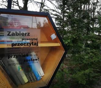 Biblioteka przypomina o książkach na półkach plenerowych