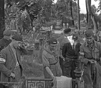 Śladami Powstania '44. Cmentarze na Woli zamieniły się w kryjówki