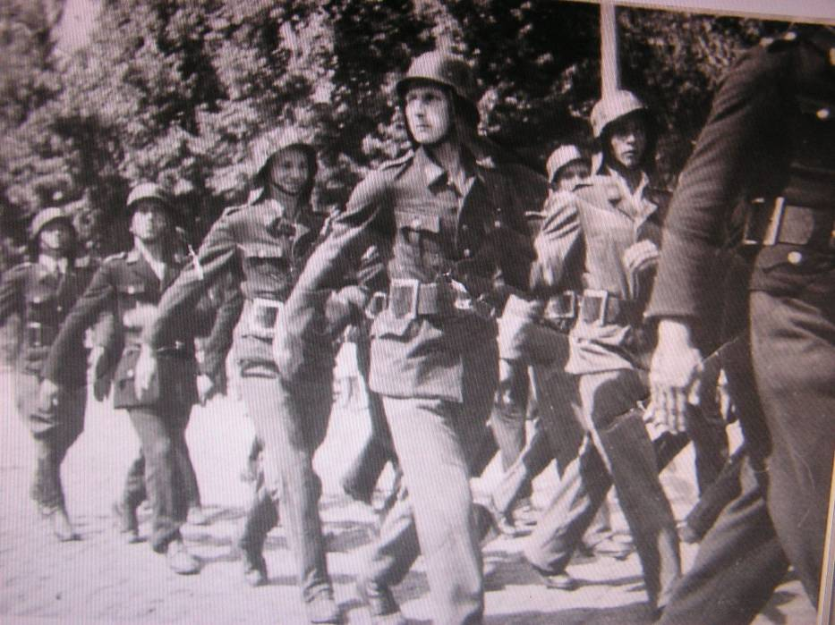 Elbląscy strażacy podczas defilady 22 lipca 1945 roku