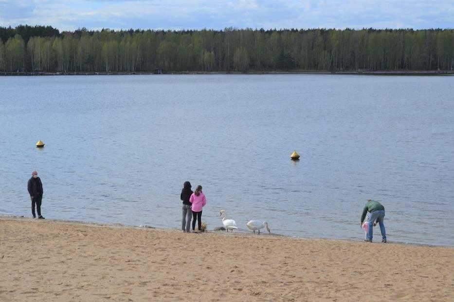 Udostępnienie lasów, parków  i plaż dla spacerowiczów spowodowało, że w Pieczyskach w miniony weekend spotkać można było pierwszych gości