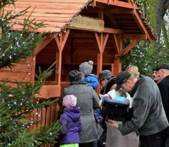 Żywa szopka zachwycała mieszkańców przed bazyliką w Trzemesznie [zdjęcia]