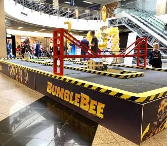 Bumblebee we wrocławskim Borku. Witajcie w świecie Transformers!