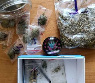 Dwie mieszkanki Kraśnika zatrzymane za posiadanie marihuany