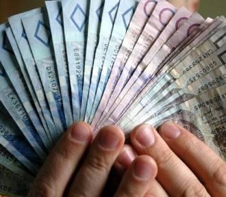 W PUP będzie się można starać o pieniądze na założenie firmy
