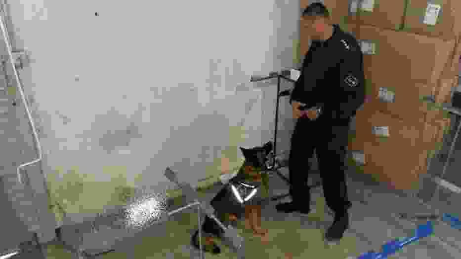 Zielonogórscy policjanci wspólnie z kolegami z Samodzielnego Pododdziału Antyterrorystycznego Policji KWP w Gorzowie Wlkp
