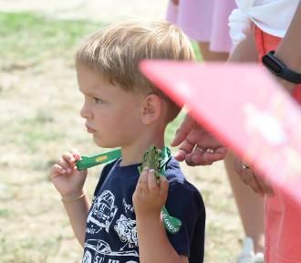 Cross Sierakowski 2021: Sportowa impreza dla dzieci w Sierakowie [ZDJĘCIA]