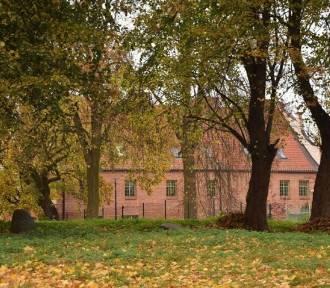 Przetargi w Malborku. Co z terenem za Szpitalem Jerozolimskim i boiskiem w parku