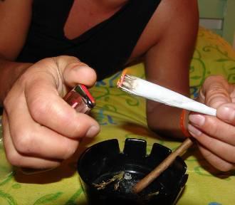 Mama hodowała konopie, syn sprzedawał marihuanę. Rodzinny biznes rozbili policjanci