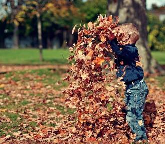 Jaka będzie pogoda we wrześniu? Kiedy przyjdzie jesień? Zobacz!