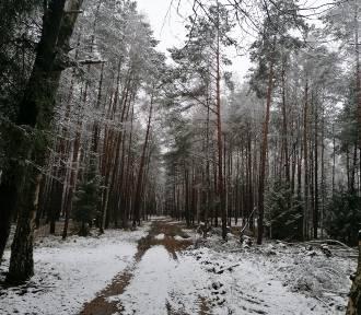 Przepiękna zima w Waszym obiektywie. Zobaczcie jak pięknie jest zimą  [ZDJĘCIA]