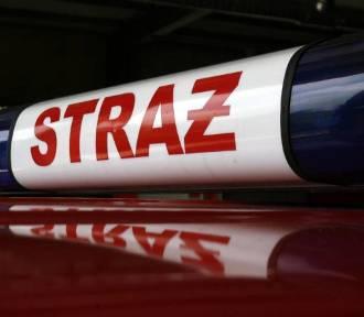 Wypadek w Polpharmie w Starogardzie Gdańskim. Poszkodowany jeden z pracowników