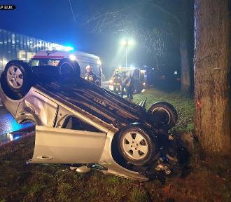 DW 307: Opel dachował i uderzył w drzewo [ZDJĘCIA]