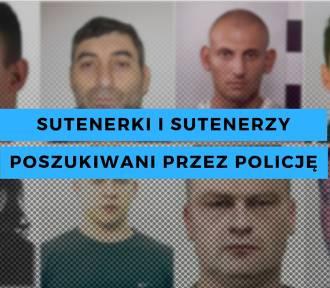 Sutenerki i sutenerzy poszukiwani przez policję