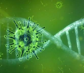 Niemcy: można się spodziewać nawet sto tysięcy nowych zakażeń koronawirusem dziennie!