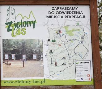Pomysł na weekendowy wypad w okolicy Żar. Ścieżki w Zielonym Lesie i trzy wieże